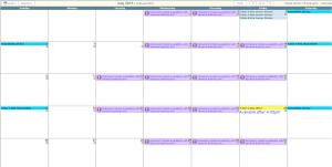 sample view of calendar