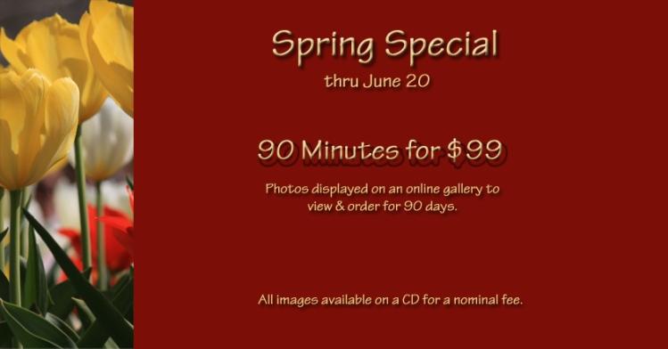 spring-special-slide