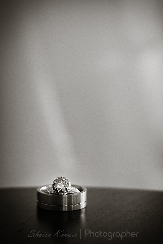 Wedding Rings - Simple