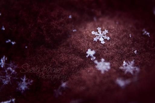 Itty bitty chunky snowflake!