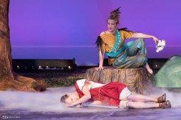 Midsummer Night's Dream – Theater Photography